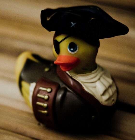 canard vibrant pirate