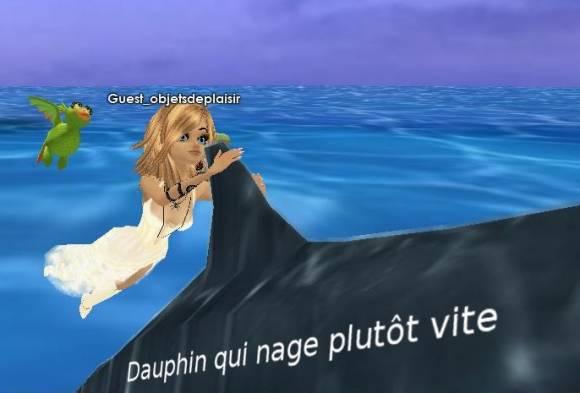 Coincée sur un dauphin