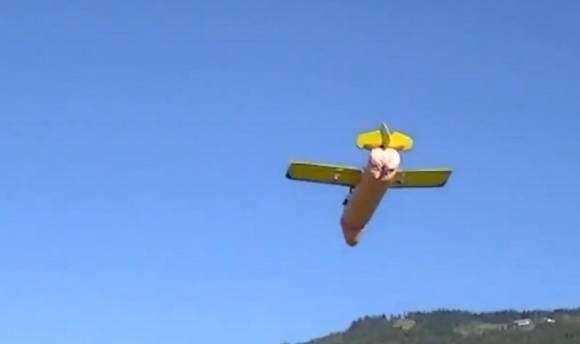 Avion pénis