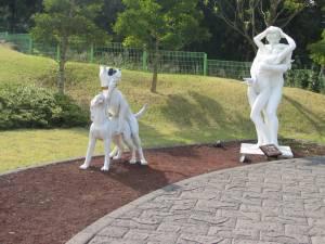 jeju loveland - chiens