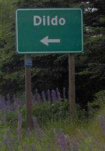 ville de Dildo, Canada