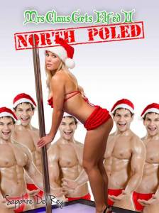 mrs-claus-gets-elfed2