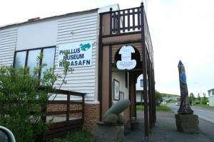 musée phallologique islandais