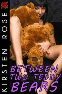 Peluches et sexe : un livre érotique avec deux ours en peluche