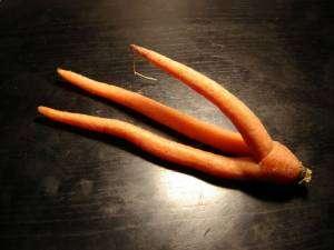 carotte-triple