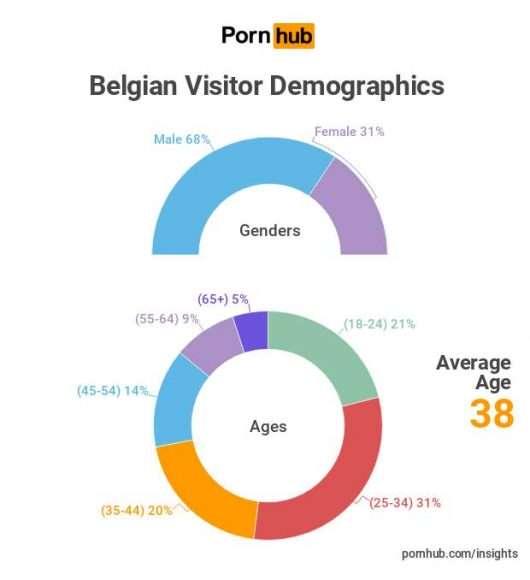 Profil de l'amateur de porno belge