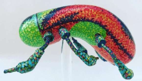 Un insecte en forme de sextoy créé par Paul Paiement