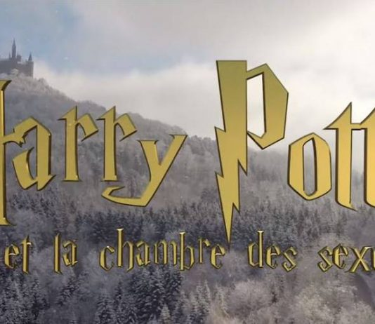 Harry Potter et la chambre des sexualités :l'éducation sexuelle à Poudlard