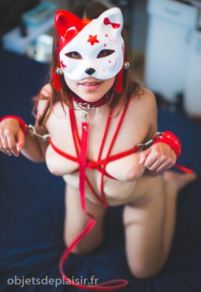 Photos sexy du jour : bondage cat
